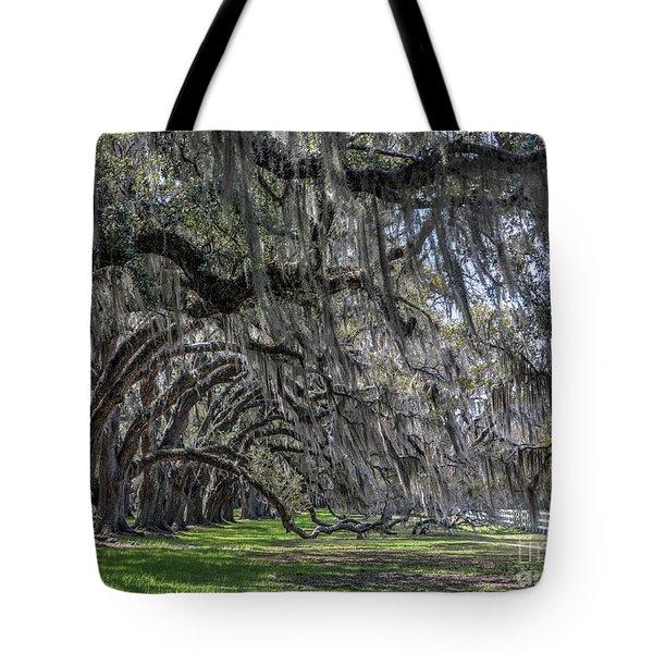 Tomotley Plantation Arches Tote Bag