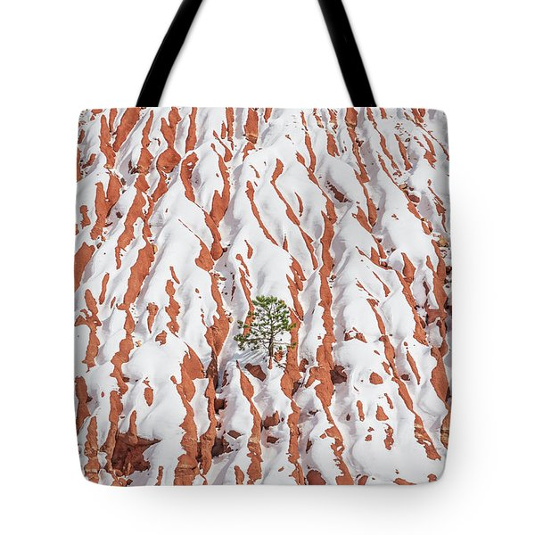 Tonan, The Aztec Goddess Of Winter Solstice  Tote Bag