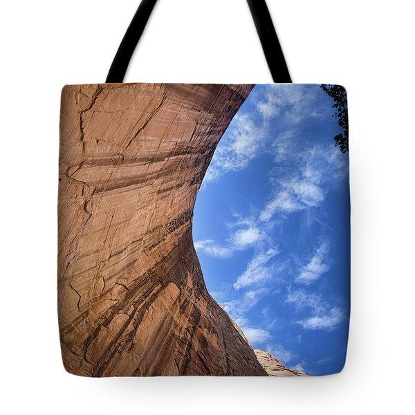 Tones Of Solitude Tote Bag