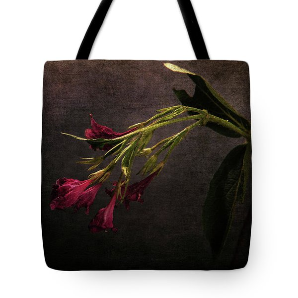 Tote Bag featuring the photograph Toning Down by Randi Grace Nilsberg