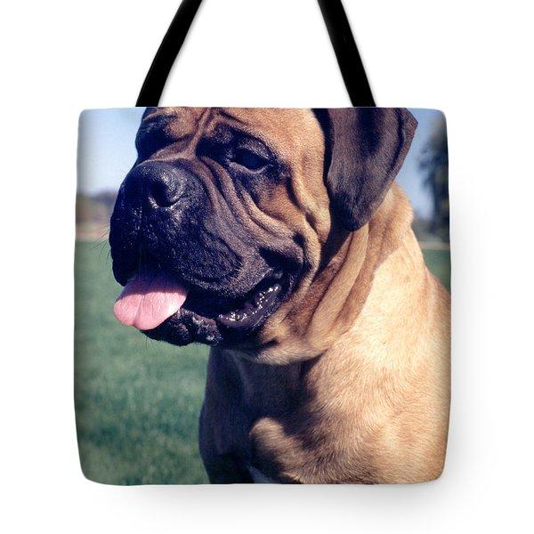 Tonka - Retouched 11x14 Tote Bag