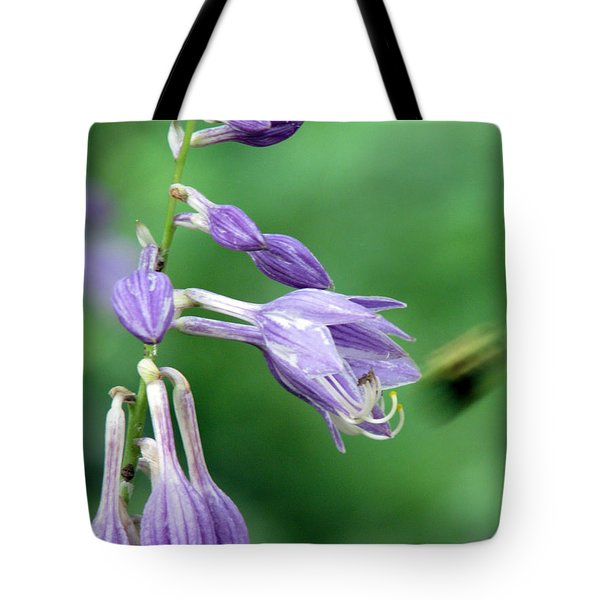 Too Busy To Notice Tote Bag by Amanda Barcon