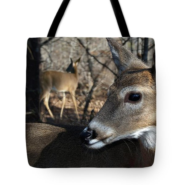 Too Cool Tote Bag by Bill Stephens
