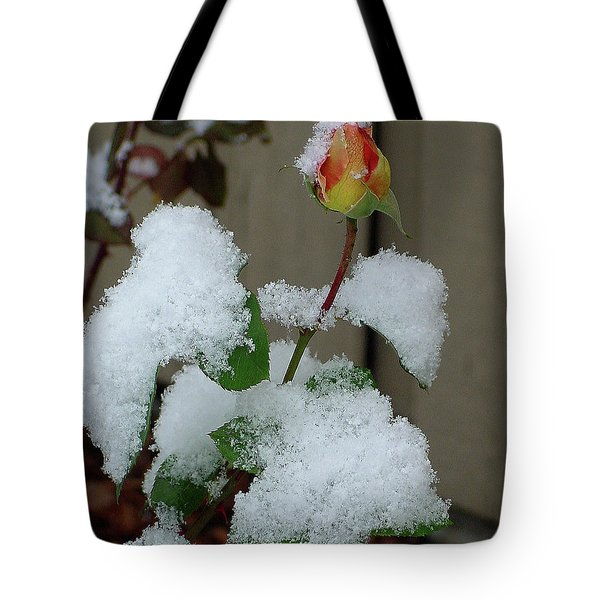 Too Soon Winter - Yellow Rose Tote Bag by Shirley Heyn