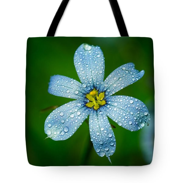 Top View Of A Blue Eyed Grass Flower Tote Bag