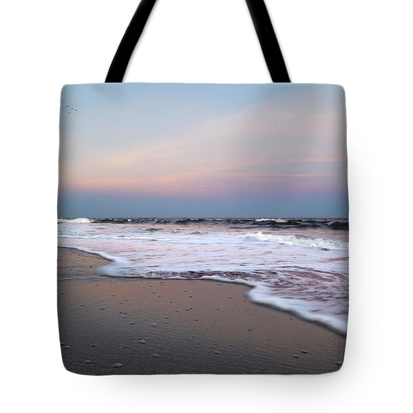 Topsail Dome-esticated Evening Tote Bag by Betsy Knapp
