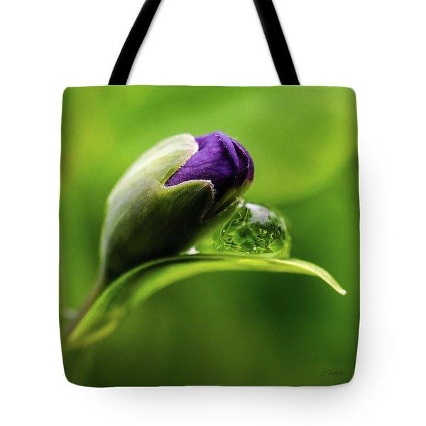 Topsy Turvy World In A Raindrop Tote Bag by Jordan Blackstone