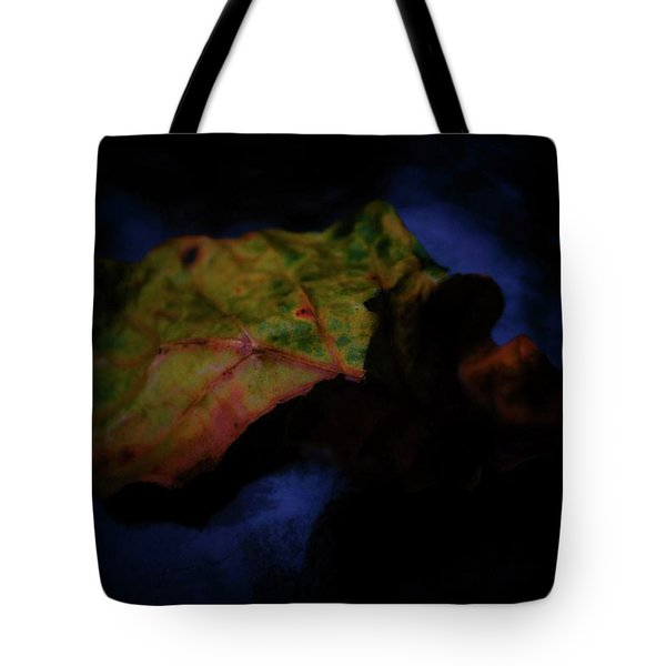 Tote Bag featuring the photograph Torn by Beth Akerman