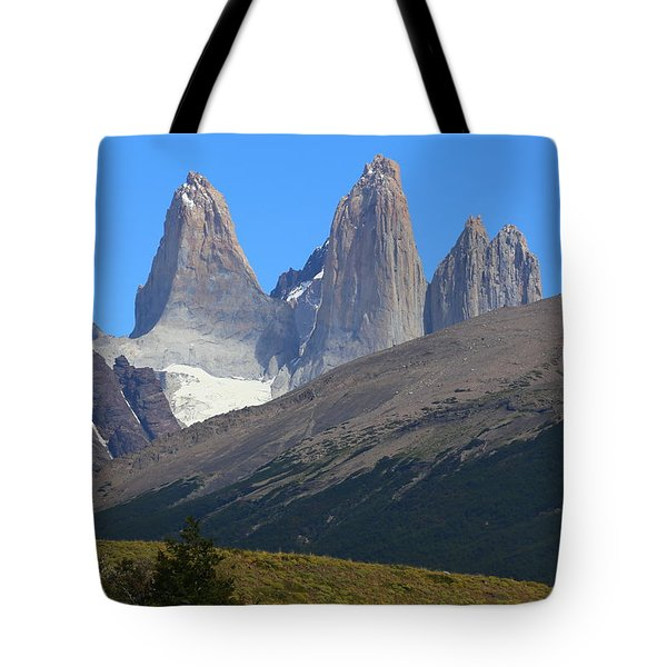 Torres Del Paine Tote Bag by Andrei Fried