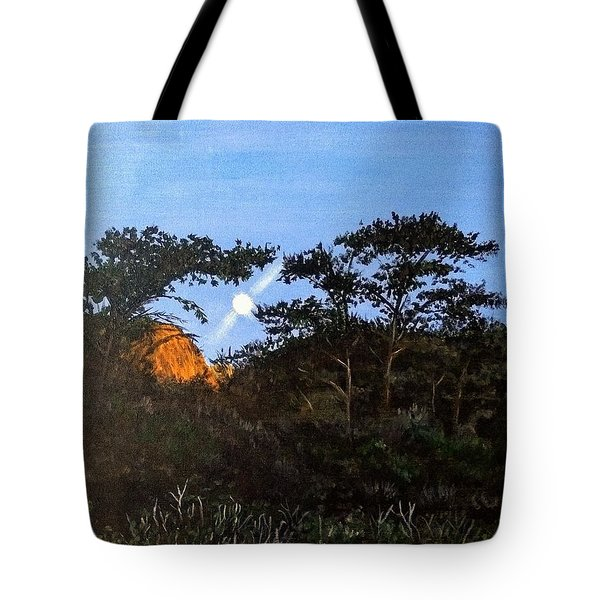 Tote Bag featuring the painting Torrey Pines In The Morning by Kevin Daly