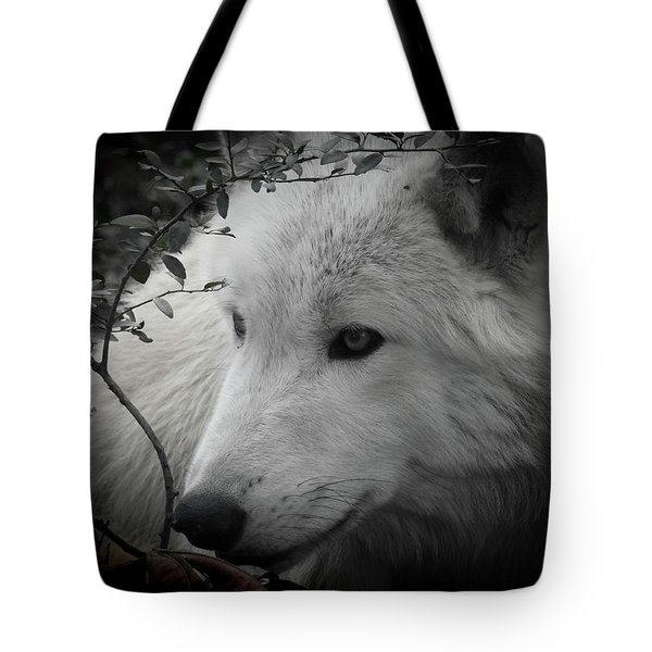 Totem, No. 24 Tote Bag