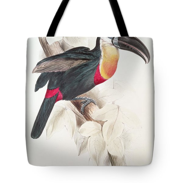 Toucan Tote Bag by Edward Lear