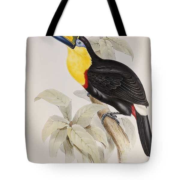 Toucan Tote Bag by John Gould