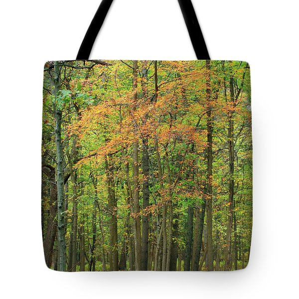Touch Of Autumn Tote Bag by Cedric Hampton