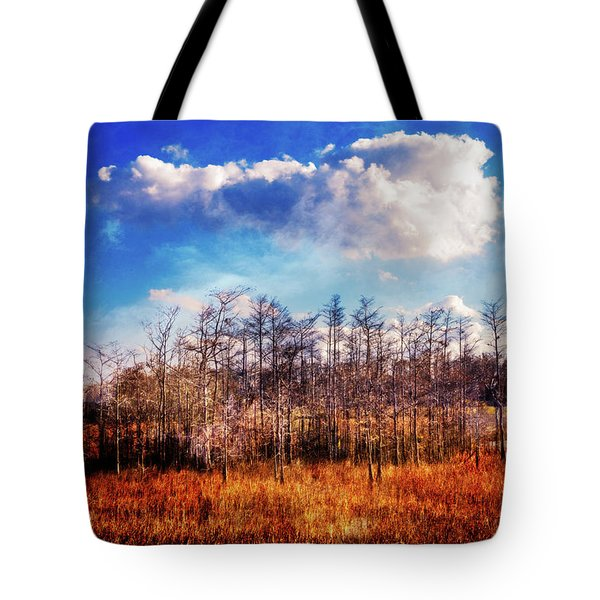 Tote Bag featuring the photograph Touch Of Autumn In The Glades by Debra and Dave Vanderlaan