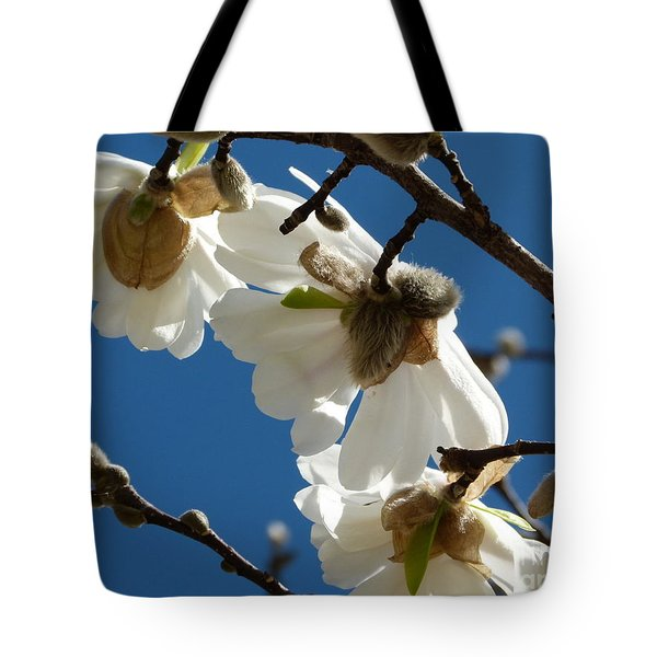 Tote Bag featuring the photograph Touch Of Spring by Jane Ford