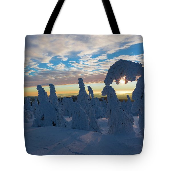 Touched From The Winter Sun Tote Bag by Andreas Levi