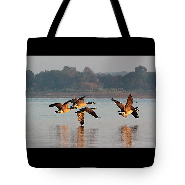 Touching Down At Sunrise Tote Bag by Sheila Brown