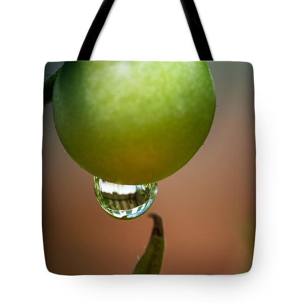 Touching Worlds Tote Bag
