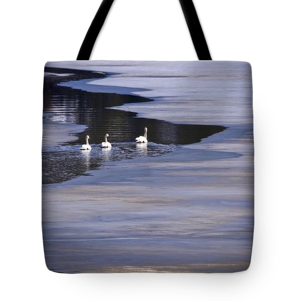 Tourist Swans Tote Bag