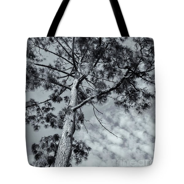 Tote Bag featuring the photograph Towering by Linda Lees