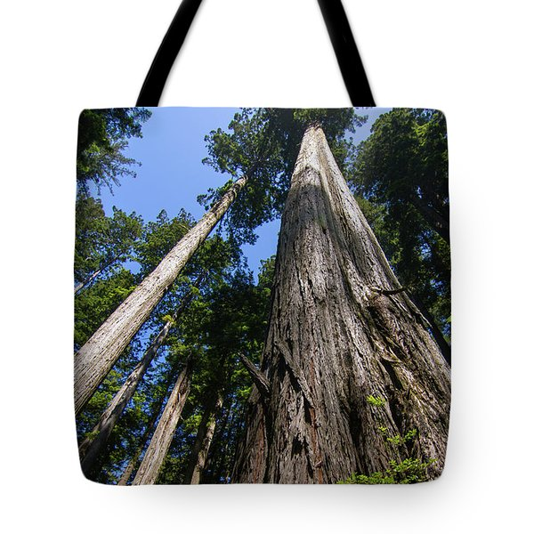 Towering Redwoods Tote Bag