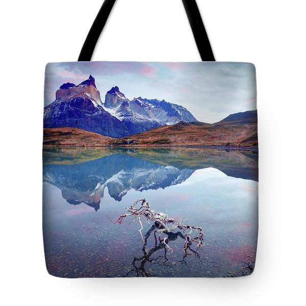 Towers Of The Andes Tote Bag