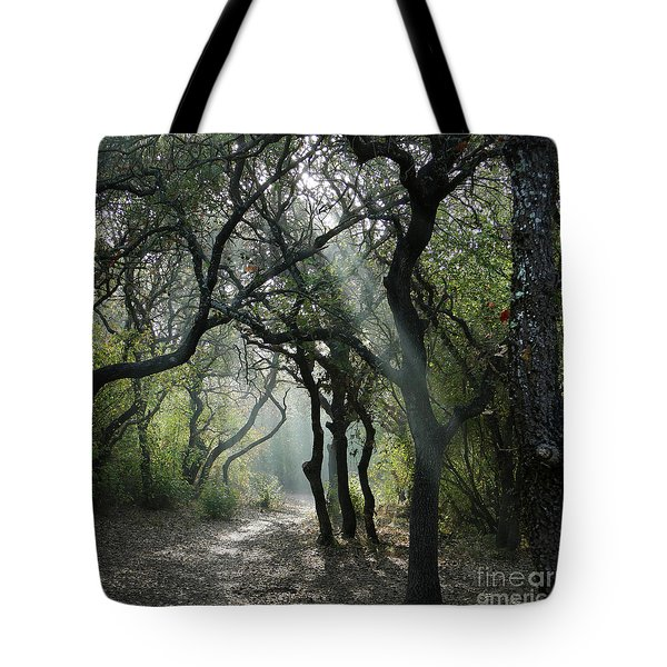 Trail Of Light Tote Bag