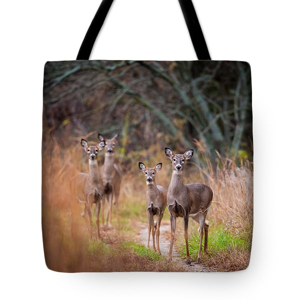 Trail Watchers Tote Bag