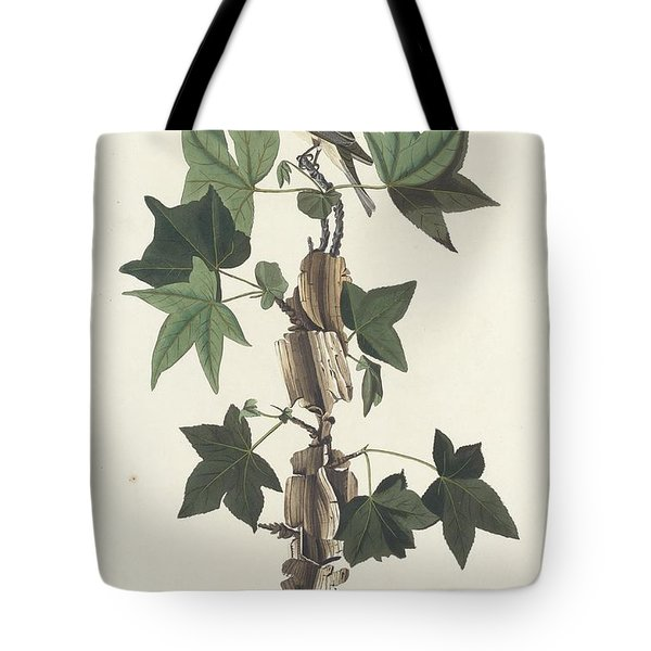 Traill's Flycatcher Tote Bag