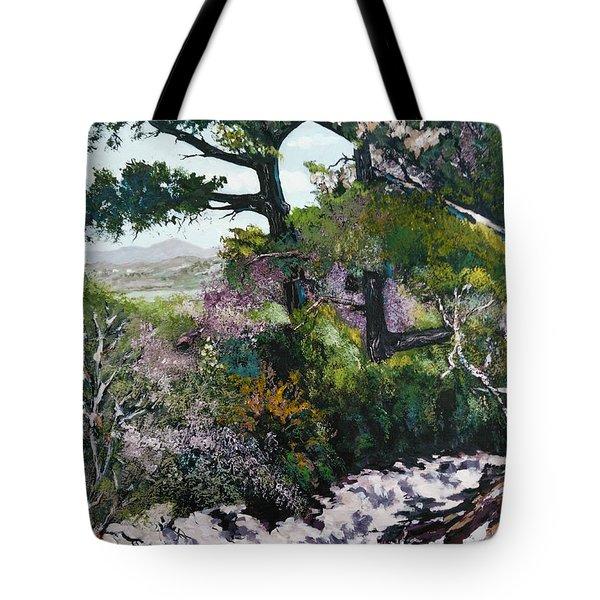 Trails Beauty Tote Bag