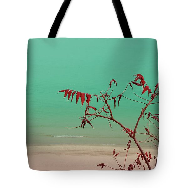Tranquil View Tote Bag by Arthur Fix