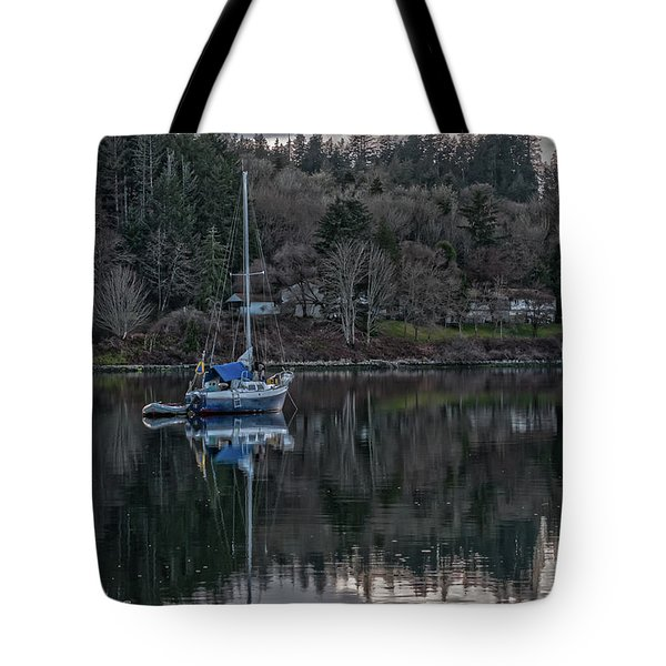 Tranquility 9 Tote Bag by Timothy Latta