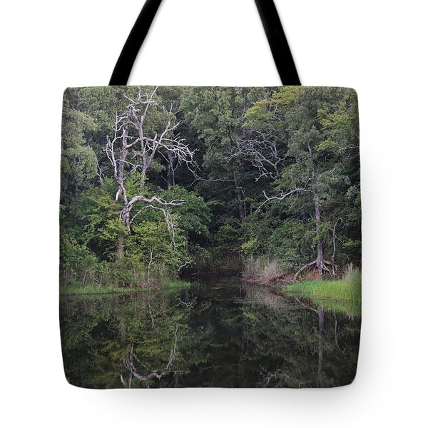 Tote Bag featuring the photograph Tranquility by Sheila Brown