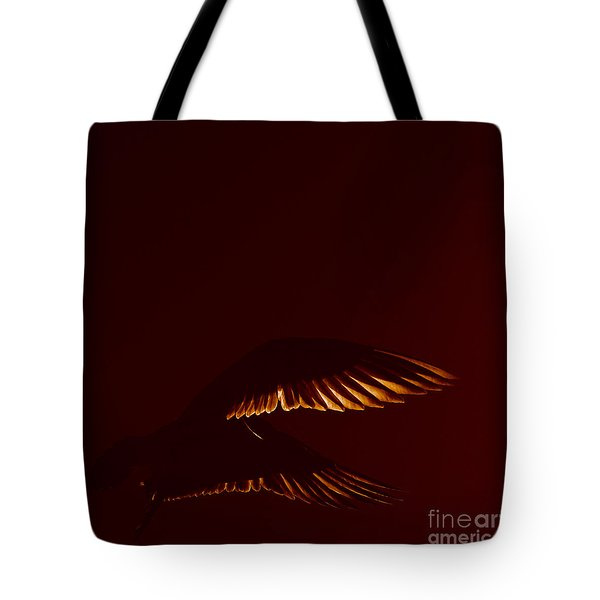 Transiently Translucent Tote Bag