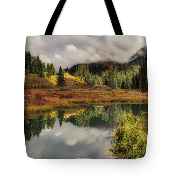 Tote Bag featuring the photograph Transition by OLena Art Brand