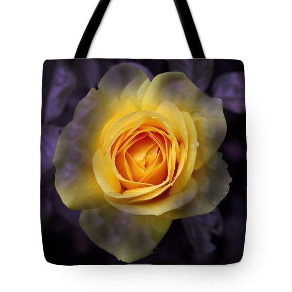 Transitional Rose Tote Bag