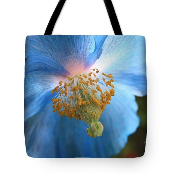 Translucent Blue Poppy Tote Bag by Carol Groenen