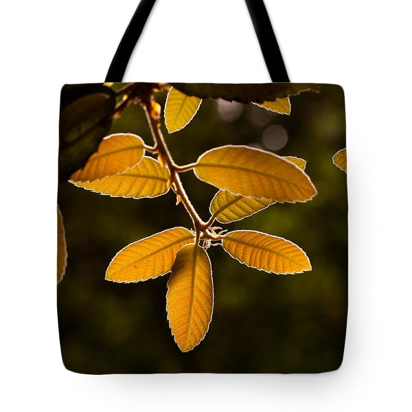Translucent Leaves Tote Bag