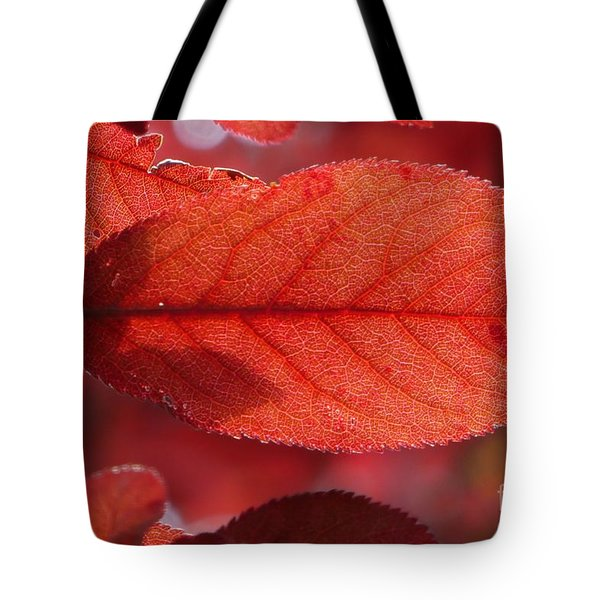 Transparence 23 Tote Bag by Jean Bernard Roussilhe