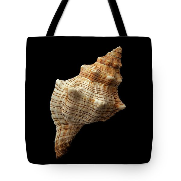 Trapezium Horse Conch Shell Tote Bag by Jim Hughes