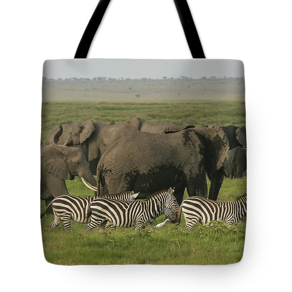 Tote Bag featuring the photograph Travelling Companions by Gary Hall