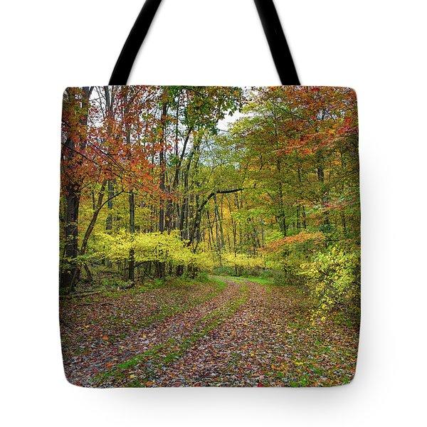 Travels Through Autumn Tote Bag