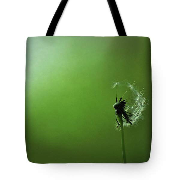 Tread Softly Tote Bag by Rebecca Sherman