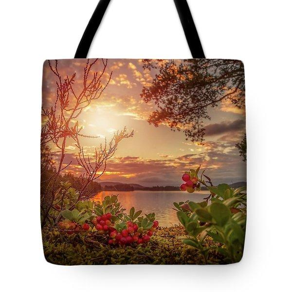Treasures In Nature Tote Bag