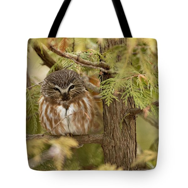 Tote Bag featuring the photograph Treasures Of The Forest by Everet Regal