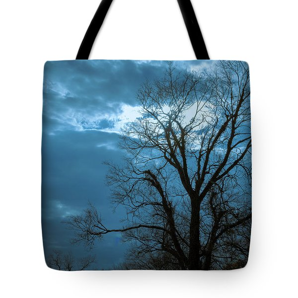 Tree # 23 Tote Bag