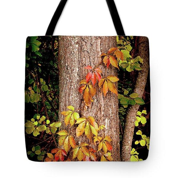 Tree Adornment Tote Bag