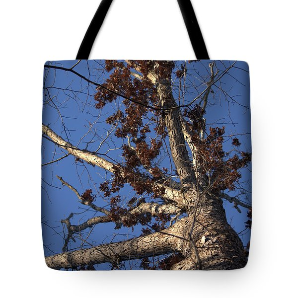 Tree And Branch Tote Bag