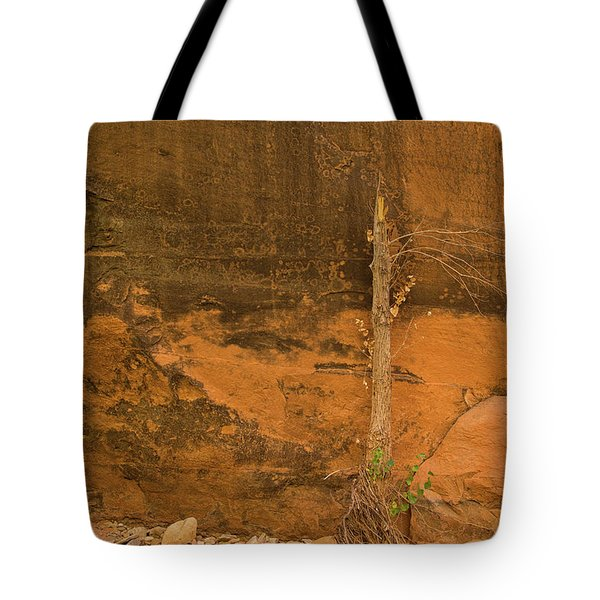 Tree And Sandstone Tote Bag